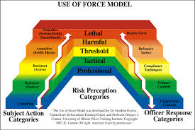 excessive-force-chart